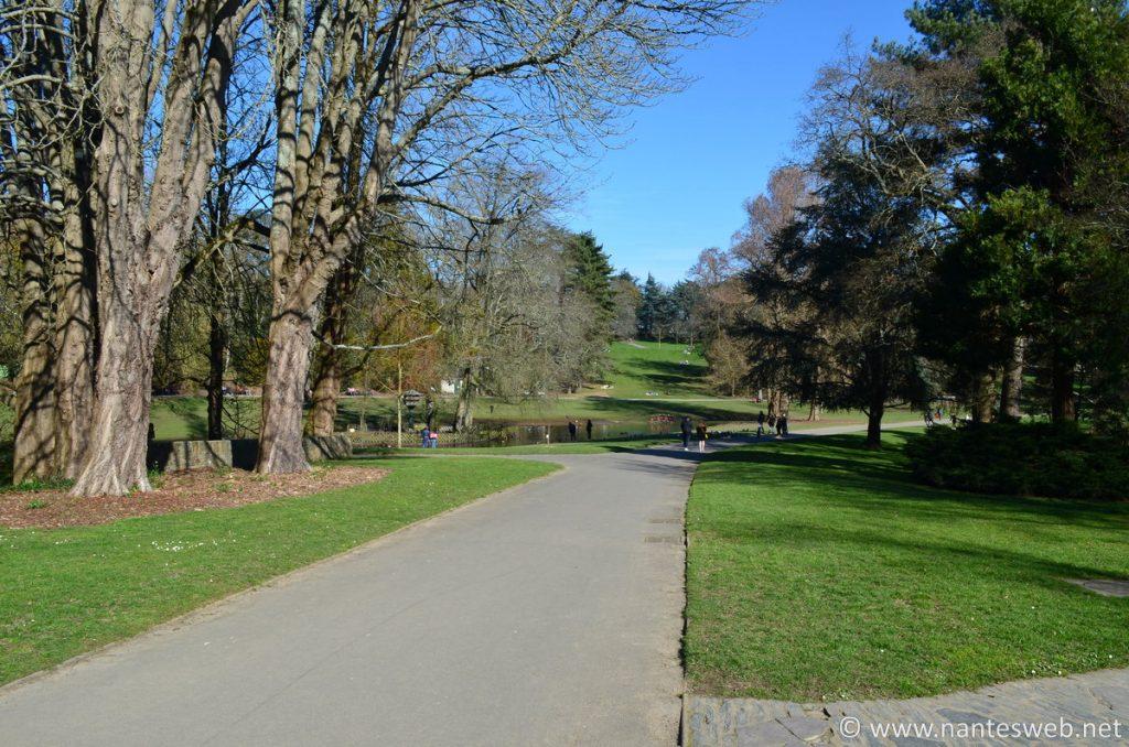 Une allée du parc